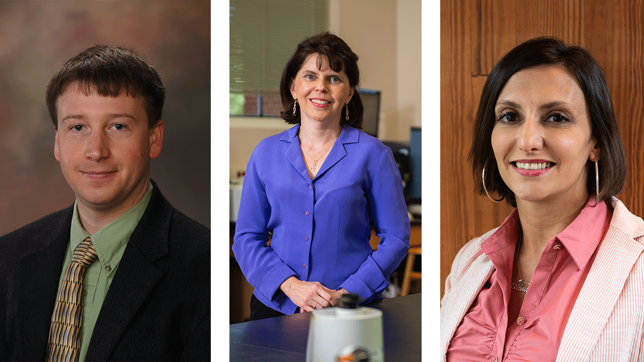 Auburn University faculty members Robert Ashurst, Virginia Davis and Maria Soledad Peresin