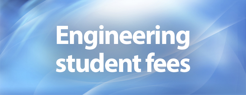 Engineering Fees