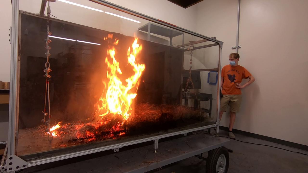 Researchers observe a controlled burn.