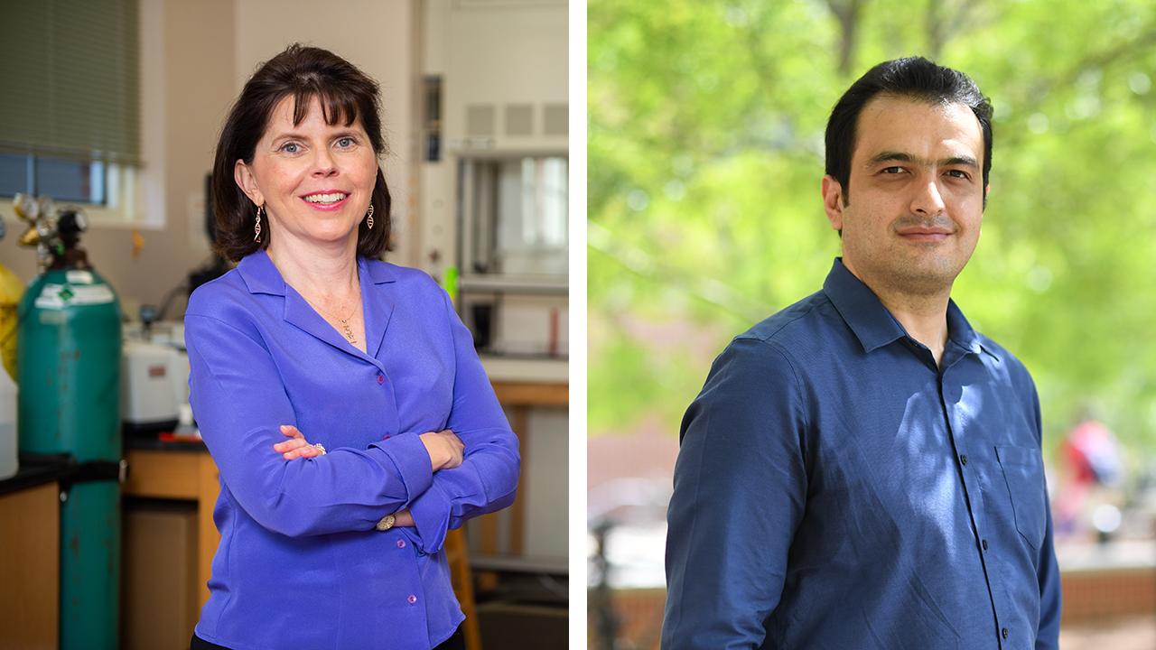 Virginia Davis and Majid Beidaghi