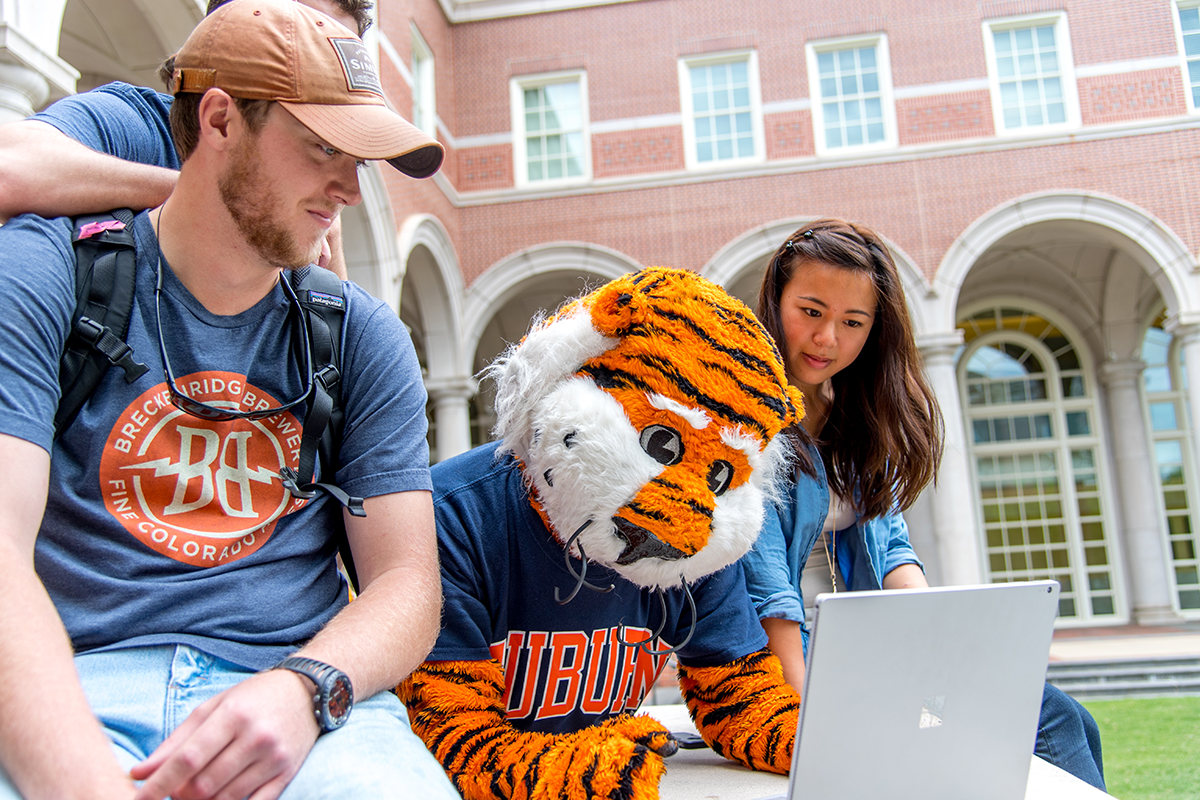 Working with Aubie
