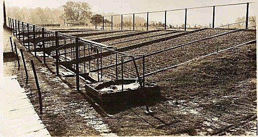 1933 Erosion Plots