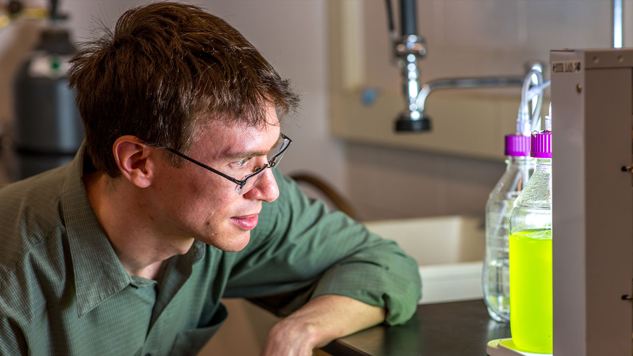 Brendan Higgins, assistant professor of biosystems engineering, examines Chlorella algae in his lab.